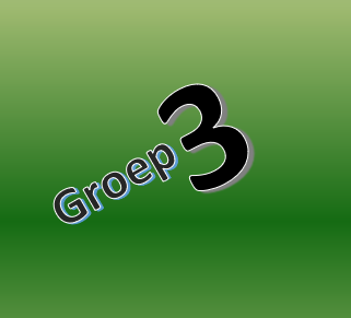 Groep 3 en 4